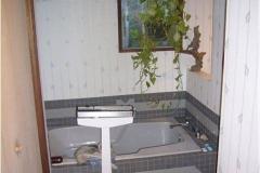 bathroom-2-remodel-before