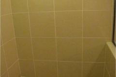 current-bathroom-transformation-after-7