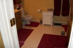 current-bathroom-transformation-before-1