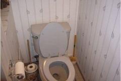 bathroom-2-remodel-water-closet-before